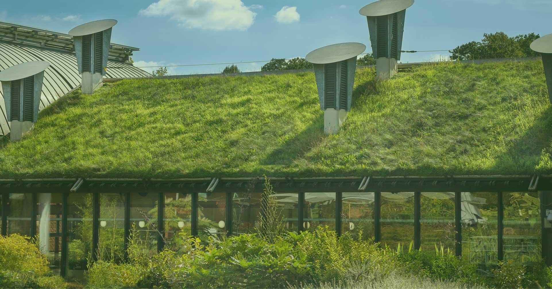 grønne tage, græs på taget,
